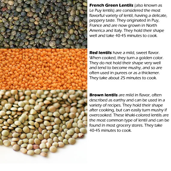 curried french lentils - straight up food
