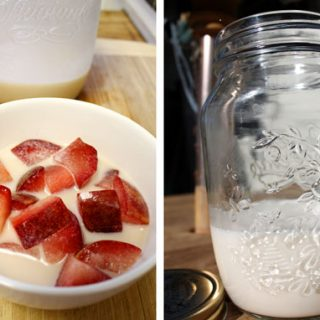 Nondairy Milks